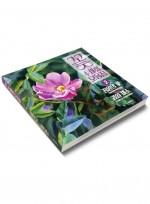 꽃 수채화 모음집 2, 플라워 보태니컬 수채화, 정원의 꽃