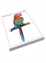 [미술학원 교재] 색연필로 그린 과일과 동물, 동물 과일 색연필화 자료집, 과일 동물 일러스트레이션