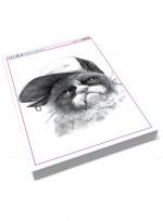 [미술학원 교재] 동물 소묘, 동물(새, 강아지, 고양이, 아프리카 야생) 연필 개체 묘사, 애니멀 뎃생, 동물드로잉
